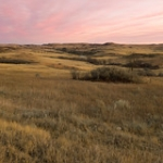 """Prairie Sunset • <a style=""""font-size:0.8em;"""" href=""""http://www.flickr.com/photos/56452031@N00/50629133988/"""" target=""""_blank"""">View on Flickr</a>"""