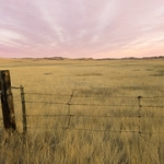 """Prairie Sunset • <a style=""""font-size:0.8em;"""" href=""""http://www.flickr.com/photos/56452031@N00/50629134533/"""" target=""""_blank"""">View on Flickr</a>"""