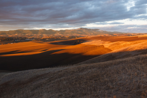 View of Moscow Mountain and the Idaho Palouse.