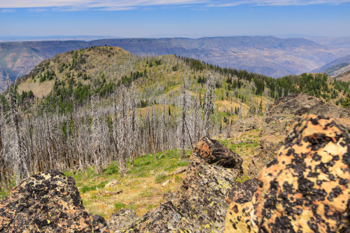 View of the Dry Diggins Lookout (ahead) and Hells Canyon behind it.