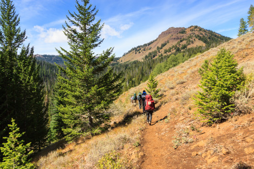 Hiking in on the Tenderfoot Wagon Road