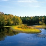 """Saco River Foliage • <a style=""""font-size:0.8em;"""" href=""""http://www.flickr.com/photos/56452031@N00/313282135/"""" target=""""_blank"""">View on Flickr</a>"""
