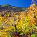 """Mount Washington • <a style=""""font-size:0.8em;"""" href=""""http://www.flickr.com/photos/56452031@N00/305479138/"""" target=""""_blank"""">View on Flickr</a>"""