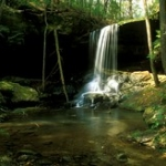 """Turkeyfoot Falls #1 • <a style=""""font-size:0.8em;"""" href=""""http://www.flickr.com/photos/56452031@N00/396032903/"""" target=""""_blank"""">View on Flickr</a>"""