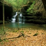 """Turkeyfoot Falls #2 • <a style=""""font-size:0.8em;"""" href=""""http://www.flickr.com/photos/56452031@N00/396033200/"""" target=""""_blank"""">View on Flickr</a>"""