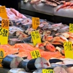 """Fish Market • <a style=""""font-size:0.8em;"""" href=""""http://www.flickr.com/photos/56452031@N00/4148439002/"""" target=""""_blank"""">View on Flickr</a>"""