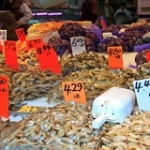 "More Fish Markets • <a style=""font-size:0.8em;"" href=""http://www.flickr.com/photos/56452031@N00/4147683479/"" target=""_blank"">View on Flickr</a>"