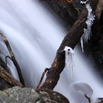 """Icicles and Waterfall • <a style=""""font-size:0.8em;"""" href=""""http://www.flickr.com/photos/56452031@N00/3111807842/"""" target=""""_blank"""">View on Flickr</a>"""