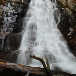 """White Oak Falls • <a style=""""font-size:0.8em;"""" href=""""http://www.flickr.com/photos/56452031@N00/3111811590/"""" target=""""_blank"""">View on Flickr</a>"""