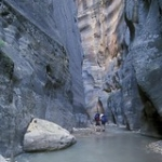 """The Zion Narrows • <a style=""""font-size:0.8em;"""" href=""""http://www.flickr.com/photos/56452031@N00/2774873807/"""" target=""""_blank"""">View on Flickr</a>"""