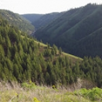 """Lapawai Canyon View • <a style=""""font-size:0.8em;"""" href=""""http://www.flickr.com/photos/56452031@N00/49831949621/"""" target=""""_blank"""">View on Flickr</a>"""